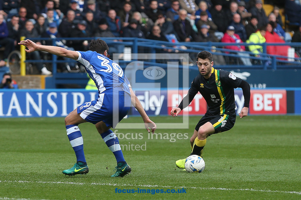Wes Hoolahan of Norwich and Vincent Sasso of Sheffield Wednesday in action during the Sky Bet Championship match at Hillsborough, Sheffield<br /> Picture by Paul Chesterton/Focus Images Ltd +44 7904 640267<br /> 04/03/2017