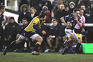 Miles Mantella in action during the Green King IPA Championship match between London Scottish &amp; Cornish Pirates at Richmond, Greater London on 16th January 2015<br /> <br /> Photo: Ken Sparks | UK Sports Pics Ltd<br /> London Scottish v Cornish Pirates, Green King IPA Championship, 16h January 2015<br /> <br /> &copy; UK Sports Pics Ltd. FA Accredited. Football League Licence No:  FL14/15/P5700.Football Conference Licence No: PCONF 051/14 Tel +44(0)7968 045353. email ken@uksportspics.co.uk, 7 Leslie Park Road, East Croydon, Surrey CR0 6TN. Credit UK Sports Pics Ltd