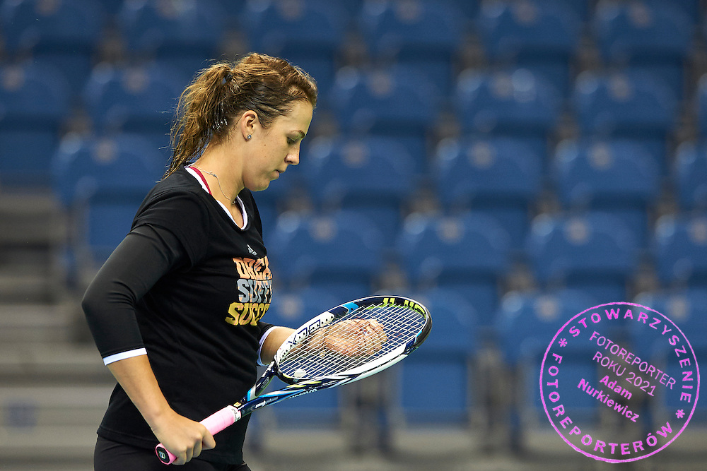 Anastasia Pavyuchenkova from Russia plays tennis during official training session two days before the Fed Cup / World Group 1st round tennis match between Poland and Russia at Krakow Arena on February 5, 2015 in Cracow, Poland.<br /> <br /> Poland, Cracow, February 5, 2015<br /> <br /> Picture also available in RAW (NEF) or TIFF format on special request.<br /> <br /> For editorial use only. Any commercial or promotional use requires permission.<br /> <br /> Adam Nurkiewicz declares that he has no rights to the image of people at the photographs of his authorship.<br /> <br /> Mandatory credit:<br /> Photo by &copy; Adam Nurkiewicz / Mediasport