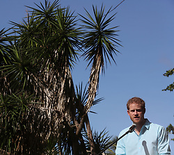 Prince Harry speaks as he attends a conversation projects exhibition, where he will unveil a plaque designating the Castries Water Works Reserve and surrounding rainforest as St Lucia's contribution to The Queen's Commonwealth Canopy Project, on the island of St Lucia during the second leg of his Caribbean tour.