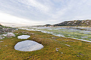 Heuningnes River and Estuary, De Mond Nature Reserve, Western Cape, South AFrica