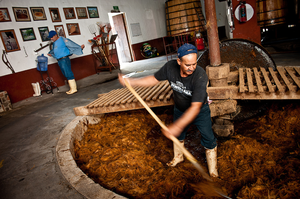 "Workers at the Tequila Fortaleza distillery rake agave fibers from the milling pit where they have been crushed by a four-ton milling stone called a ""tahona."" Tequila Fortaleza, owned by Guillermo Erickson Sauza, one of the last distilleries to produce tequila using artisanal methods."