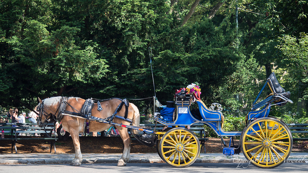 Horse-drawn carriage at Tavern on the Green in Central Park.
