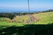 Olinda Road, Upcountry Maui, Hawaii