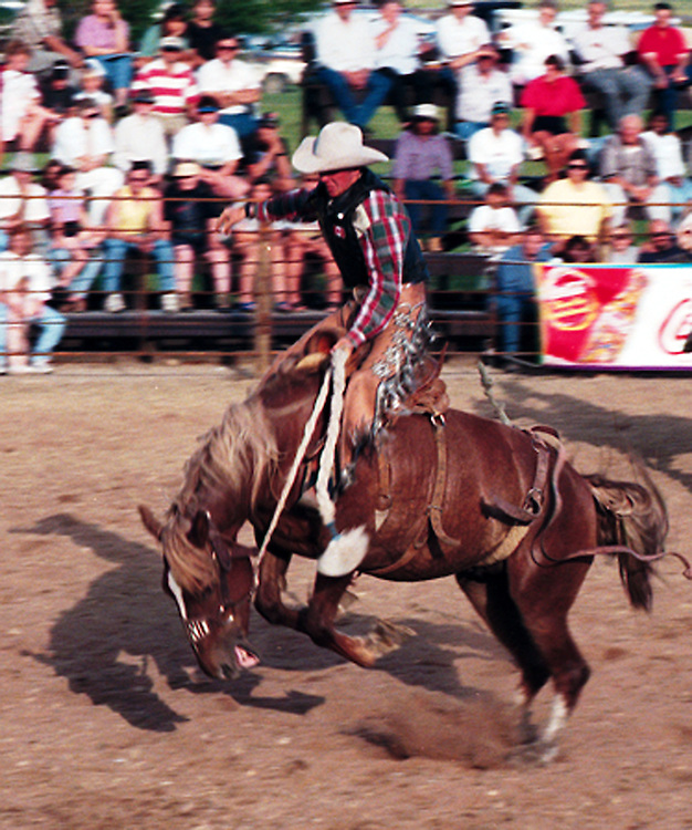 Cowboy Rodeo Rider on Bronc, Fort Qu'Appelle Rodeo, Saskatchewan