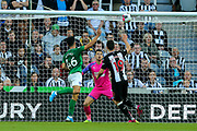 Steven Alzate (46) of Brighton & Hove Albion heads the ball into the net but it is ruled out for offside during the Premier League match between Newcastle United and Brighton and Hove Albion at St. James's Park, Newcastle, England on 21 September 2019.