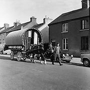 Ballinsalve Tinker King, Hous Fair.03.10.1960