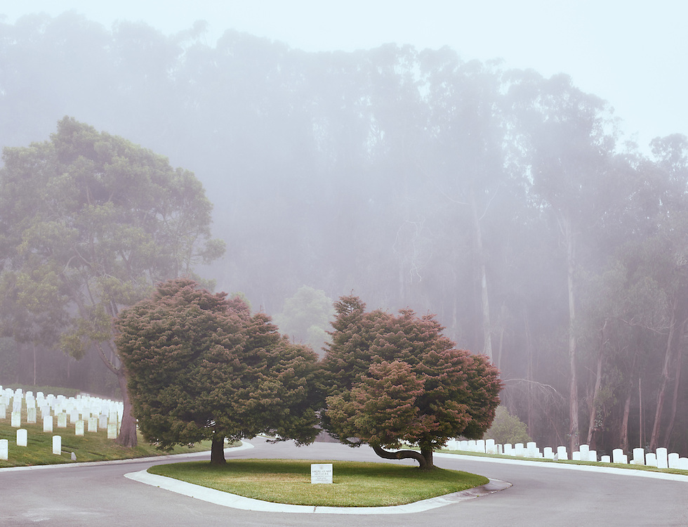 San Francisco National Cemetery on a foggy day in the fall.