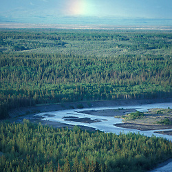 View of Alaska's Copper River with forest