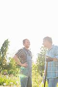 Happy gardeners conversing at plant nursery