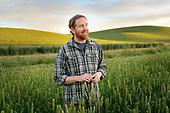 Kevin Murphy Barley Breeder