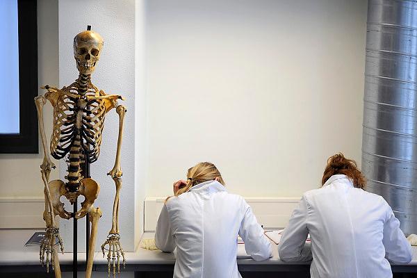 Nederland, Nijmegen, 1-3-2010Studenten medicijnen zijn in de snijzaal van anatomie bezig met een practicum.Foto: Flip Franssen