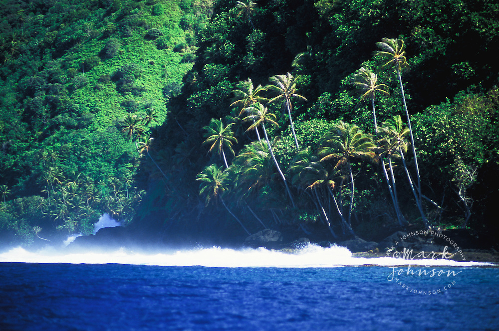 Lush jungle on the Te Pari coast, Tahiti, French Polynesia