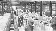 World War I - 1914-1918.  After conscription in 1916, British women took over many civilian jobs.  Girls filling shells in a munitions factory, wearing masks and gloves to stop inhalation and absorption of harmful chemicals.