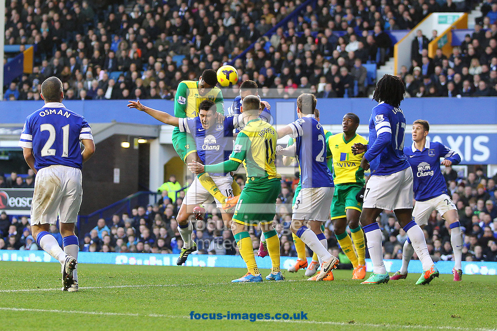 Picture by Paul Chesterton/Focus Images Ltd +44 7904 640267<br /> 11/01/2014<br /> Leroy Fer of Norwich heads for goal during the Barclays Premier League match at Goodison Park, Liverpool.
