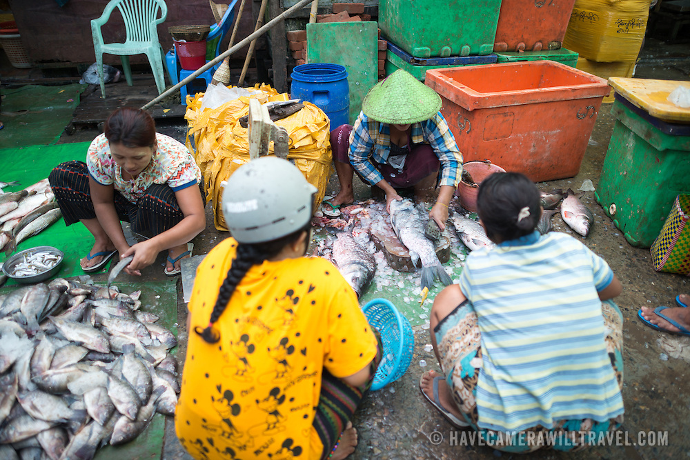 Cleaning fish for sale at the fish and flower market in Mandalay, Myanmar (Burma).