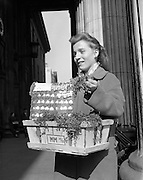 Anyone for a badge or spray of shamrock? Young Girl selling Shamrock   at the GPO, General Post Office, O'Connell Street Lower, Dublin, Ireland. 17.03.1961.<br /> historic photograph of  St. Patrick's Day, O'Connell Street, Dublin, Ireland.<br /> historic photographs of  St. Patrick's Day, O'Connell Street, Dublin, Ireland.<br /> historic photos of  St. Patrick's Day, O'Connell Street, Dublin, Ireland.<br /> historic picture of  St. Patrick's Day, O'Connell Street, Dublin, Ireland.<br /> historic pictures of  St. Patrick's Day, O'Connell Street, Dublin, Ireland.<br /> historic pixs of  St. Patrick's Day, O'Connell Street, Dublin, Ireland.<br /> historic view of  St. Patrick's Day, O'Connell Street, Dublin, Ireland.<br /> historical image of  St. Patrick's Day, O'Connell Street, Dublin, Ireland.<br /> historical images of  St. Patrick's Day, O'Connell Street, Dublin, Ireland.<br /> historical photo archive of  St. Patrick's Day, O'Connell Street, Dublin, Ireland.<br /> historical photographs of  St. Patrick's Day, O'Connell Street, Dublin, Ireland.<br /> historical photos of  St. Patrick's Day, O'Connell Street, Dublin, Ireland.<br /> historical picture of  St. Patrick's Day, O'Connell Street, Dublin, Ireland.<br /> historical pictures of  St. Patrick's Day, O'Connell Street, Dublin, Ireland.<br /> history photo of  St. Patrick's Day, O'Connell Street, Dublin, Ireland.<br /> history photos of  St. Patrick's Day, O'Connell Street, Dublin, Ireland.<br /> history picture of  St. Patrick's Day, O'Connell Street, Dublin, Ireland.<br /> history pictures of  St. Patrick's Day, O'Connell Street, Dublin, Ireland.<br /> image of  St. Patrick's Day, O'Connell Street, Dublin, Ireland.<br /> images of  St. Patrick's Day, O'Connell Street, Dublin, Ireland.<br /> ireland of  St. Patrick's Day, O'Connell Street, Dublin, Ireland.<br /> ireland pictures of  St. Patrick's Day, O'Connell Street, Dublin, Ireland.<br /> irish historic images of  St. Patrick's Day, O'Connell Street, Dublin