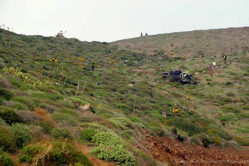 North America, Mexico, Baja California, Ensenada. A car that went off the road and tumbled down the hill on the MX-1 transpeninsular highway.