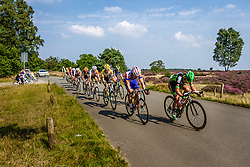 Leading group during the Arnhem - Veenendaal Classic at Posbank, Rheden, Gelderland, The Netherlands, 21 August 2015.<br /> Photo: Thomas van Bracht / PelotonPhotos.com