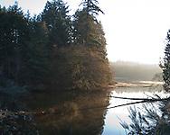 Wollochet bay in the morning