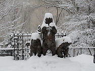 Paul Manship's Three Bears in Central Park in the snow.