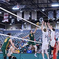 Men's Volleyball 16/17