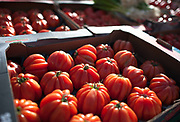 """Rennes, FRANCE. General View GV. Rennes weekly regional market. Brittany,<br /> <br /> """"Tray of Tomatos on Display """", sold from stalls in the open and covered market  <br /> <br /> Saturday  26/04/2014 <br /> <br /> © Peter SPURRIER, <br /> <br /> NIKON CORPORATION  NIKON D700  f1.4  1/5000sec  24mm  5.0MB"""