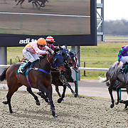 Lingfield 1st April