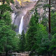 Lower Yosemite Falls, Yosemite National Park