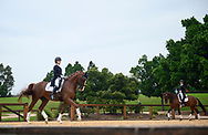SYDNEY, AUSTRALIA - MAY 03: Lesley-Anne Taylor practices ahead of the Sydney Concours de Dressage International on May 03, 2019 at The Sydney International Equestrian Centre in NSW, Australia. (Photo by Wendell Teodoro/Speed Media)