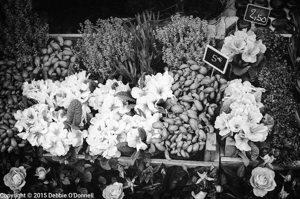 An array of flowers on display outside a store in Paris.