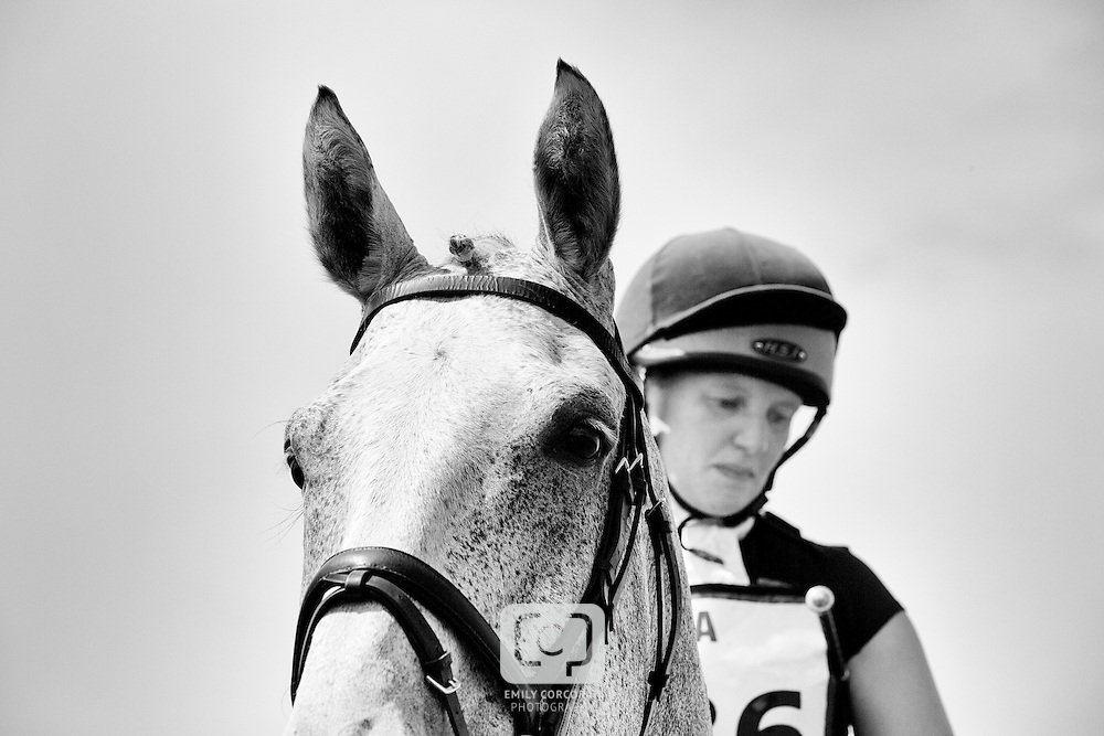 Carlton Horse Trials 2014