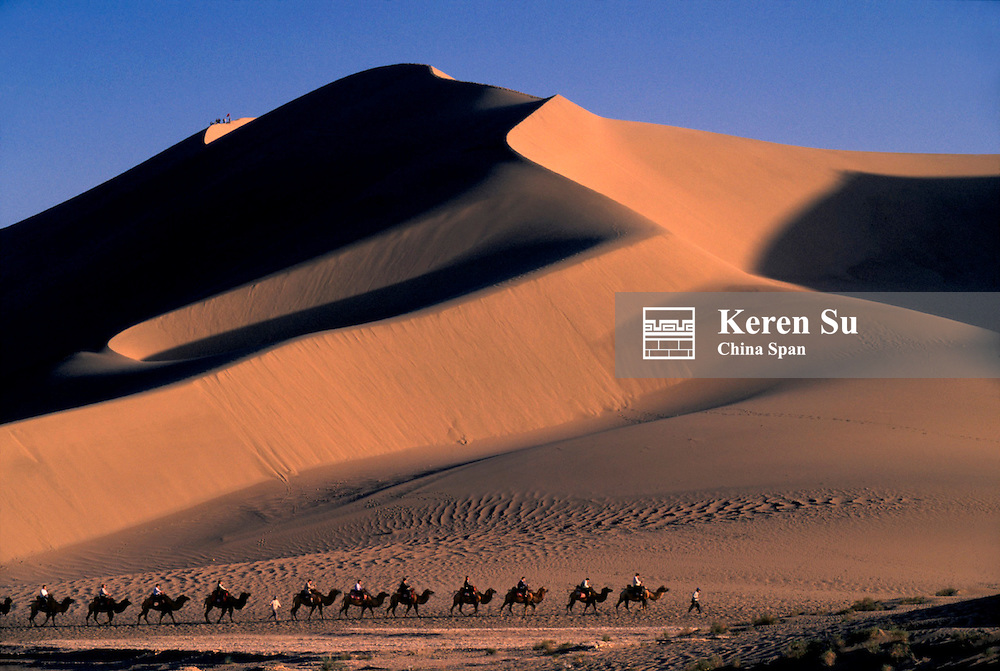 Camel caravan with sand dune at sunset in Taklimakan Desert, Silk Road, west China