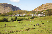 Fields around the village of Buttermere, Lake District national park, Cumbria, England, UK