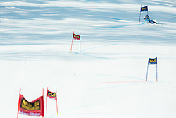 MAZE Tina (SLO) competes during 5th Ladies' Giant slalom at 51st Golden Fox of Audi FIS Ski World Cup 2014/15, on February 21, 2015 in Pohorje, Maribor, Slovenia. Photo by Vid Ponikvar / Sportida