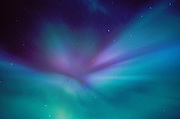 Alaska. Anchorage. Aurora borealis or northern lights forms a corona overhead.