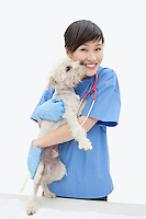 Portrait of Asian female veterinarian cuddling dog over gray background