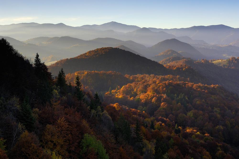 Forest hills, National Park Piatra Craiului, Transylvania, Southern Carpathians, Romania