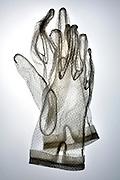 white transparent lace gloves