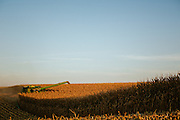 Harvesting corn on an Iowa farm.<br /> Photographed by editorial commercial lifestyle Texas photographer Nathan Lindstrom