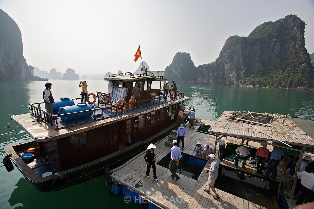 Halong Bay. Swimming fishtanks selling fresh fish and seafood to passing tourist boats.