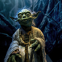 Star Wars Identities, Lyon
