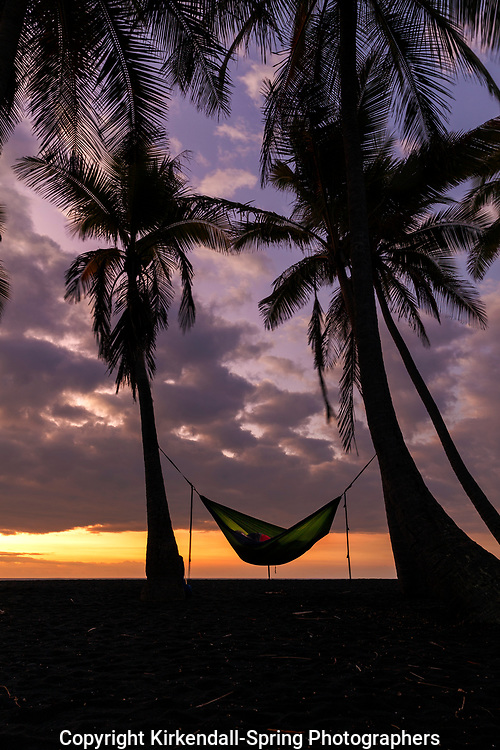 HI00230-00...HAWAI'I - Sleeping in a hammock at sunrise at Punalu'u Beach Park on the Island of Hawai'i.