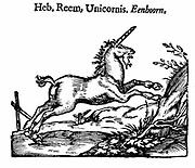 Unicorn (Heb. Reem, Unicornis. Eenhoorn). From 'Handelene van de Natuere' (Amsterdam 1644),  Dutch translation of 'Natural History' of Pliny Secundus, Pliny the Elder (23-79), Roman writer on natural history who died in the eruption of Mount Vesuvius that destroyed Pompei. Woodcut.