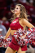 FAYETTEVILLE, AR - FEBRUARY 5:  Pom Squad member of the Arkansas Razorbacks performs during a game against the Vanderbilt Commodores at Bud Walton Arena on February 5, 2019 in Fayetteville, Arkansas. The Razorbacks defeated the Commodores 69-66.  (Photo by Wesley Hitt/Getty Images) *** Local Caption ***