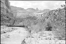Capitol Reef National Park. View shot on Tri-X, Nikon Ftn camera, Nikor 35mm f/2 lens. 500th sec F/16