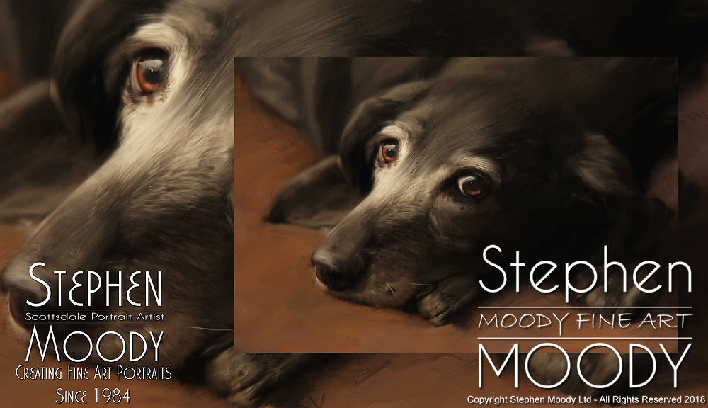 Fine Art Pet Portraits of  black labradors by Stephen Moody - Scottsdale Portrait Artist and Master Photographer, Scottsdale, AZ