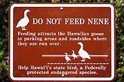 Nene warning sign on the Kilauea Iki trail, Hawaii Volcanoes National Park, Hawaii USA