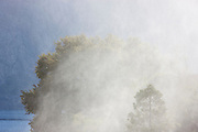 Thick mist from a waterfall obscures trees along the rim of the Hetch Hetchy Reservoir in Yosemite National Park, California.