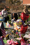 A memorial was created at lawn of University Medical Center, Tucson, Arizona, USA, where Arizona congresswoman, Gabrielle Giffords, was recovering after sustaining a gunshot wound to the head.  Six people died in the attack where Giffords and staff were meeting with constituants.  Numerous others were injured.